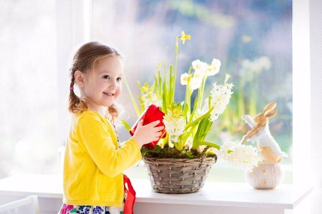 Cuidara en casa las plantas: enseña a tus hijos