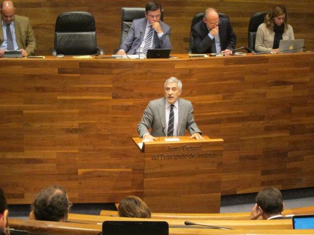 Gaspar Llamazares en el Debate de Orientación.
