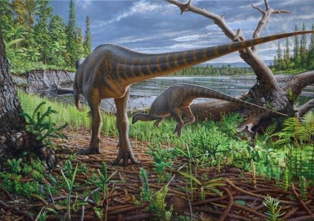Fósiles de un dinosaurio del tamaño de un pavo, hallados en Australia