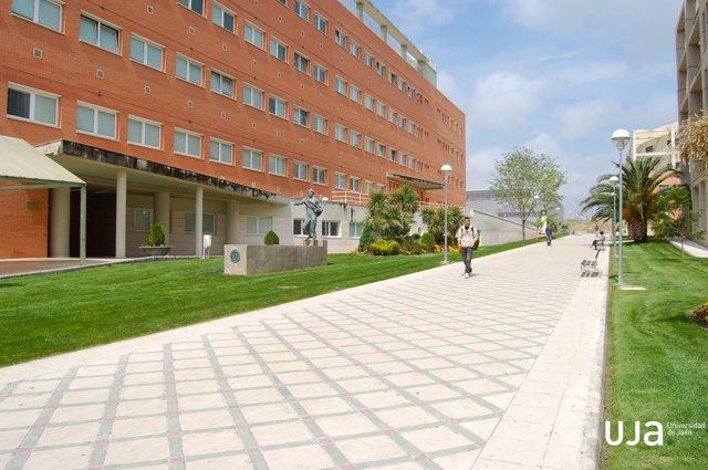 Campus de las Lagunillas de la Universidad de Jaén.