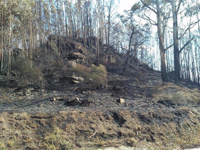 Zona quemada en un incendio en Chandebrito