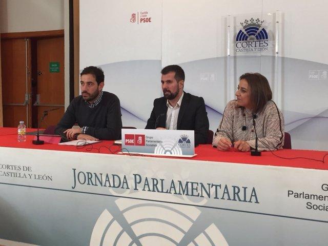 Palencia.- Blanco, Tudanca y Andrés