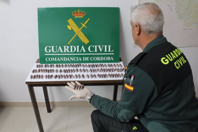 Droga intervenida por la Guardia Civil