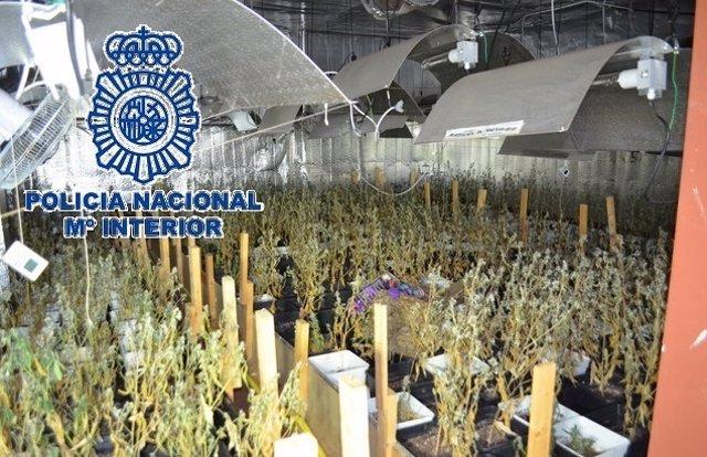 """Policía Nacional Nota De Prensa Con Enlace De Vídeo E Imágenes """"La Policía Nacio"""