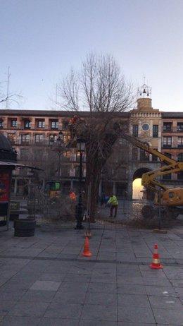 Gmpp Toledo ( Nota De Prensa, Fotografía E Imágenes Plaza Zocodover) Sonsoles Ga