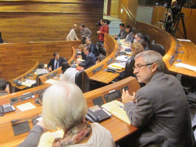 Gaspar Llamazares y Concha Masa, diputados de IU en la JGPA