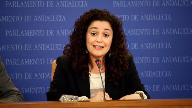 La portavoz adjunta de IULV-CA, Inmaculada Nieto