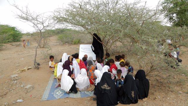 Escolares yemeníes bajo un árbol en la provincia de Hodeida