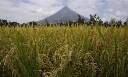 La provincia de Albay (Filipinas) declara el estado de calamidad por la erupción de lava en el volcán Mayon