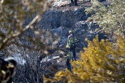 Controlat l'incendi que afecta una zona forestal i camps d'oliveres a Tortosa (ACN)