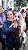 Foto: La iglesia de San Antón espera recibir hoy la visita especial de 18.000 animales para ser bendecidos por el Padre Ángel