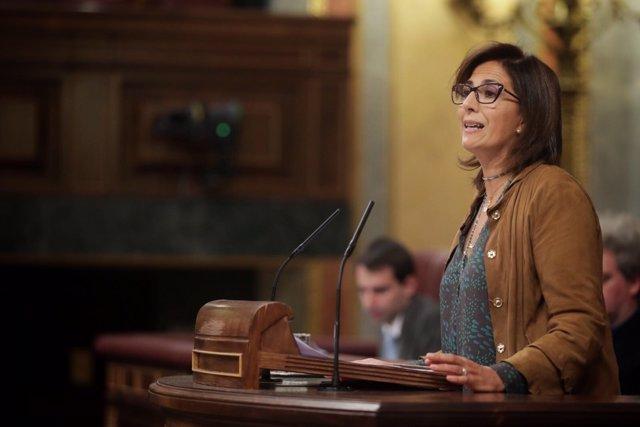 La diputada Isabel Borrego