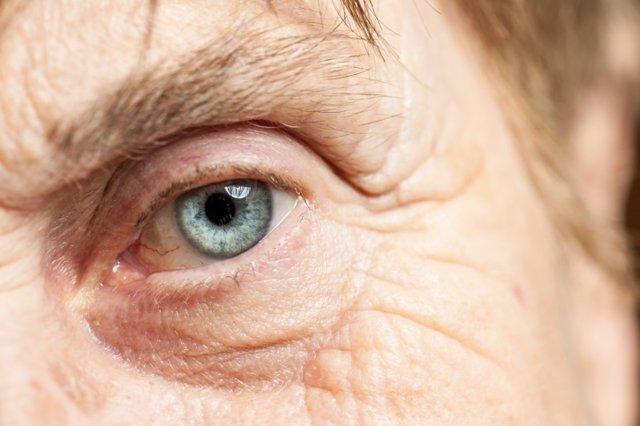 Ojo, ocular