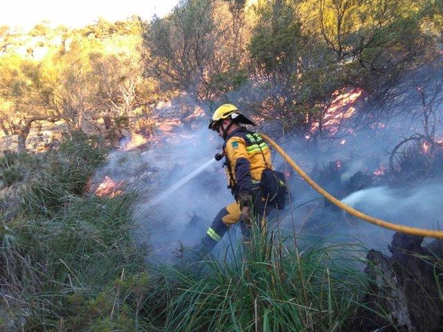 Un agente del Ibanat trabaja en un incendio en Pollença