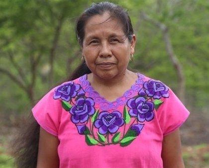 Ataque a periodistas que seguían a Marichuy, la candidata indígena a las elecciones de México