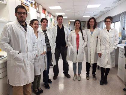 La Once y el Idibell colaboran en un proyecto de prevención de las distrofias de retina