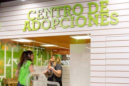 Más de 2.500 mascotas fueron adoptadas en 2017 a través de los establecimientos de Tiendanimal
