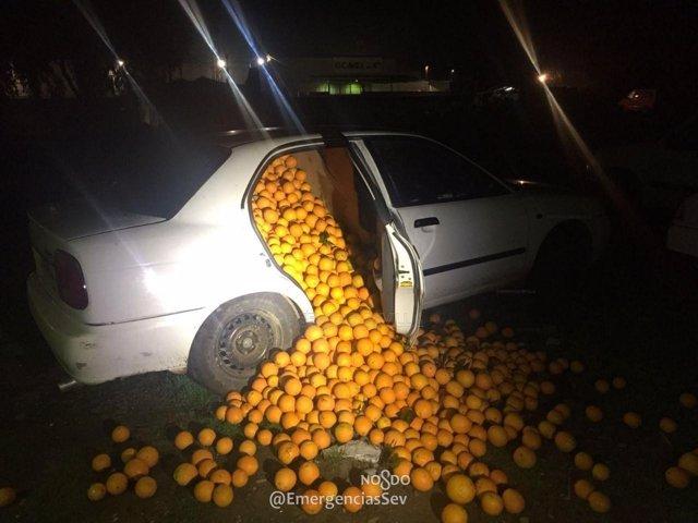 Naranjas robadas intervenidas por la Policía Local