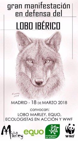 """Cartel de la """"Gran manifestación en defensa del Lobo Ibérico"""""""