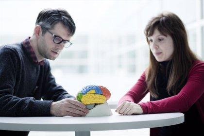 El cerebro de los bilingües, ¿funciona igual en zurdos que en diestros?