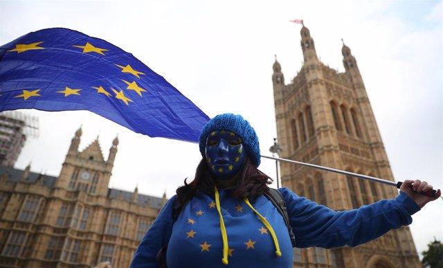 Manifestante con la bandera de la UE frente al Parlamento británico