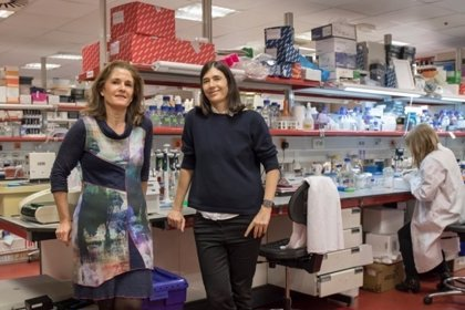 Diseñan una terapia génica que cura la fibrosis pulmonar en ratones