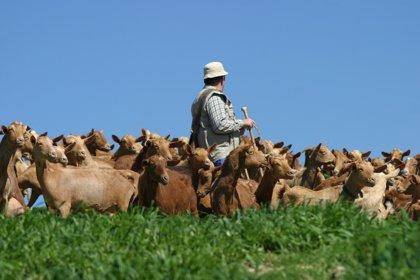 El Consejo Económico y Social alerta en un informe del grave problema del despoblamiento en el medio rural
