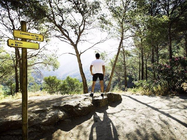 Turista viajero interior rural caminito señalización monte naturaleza senderismo