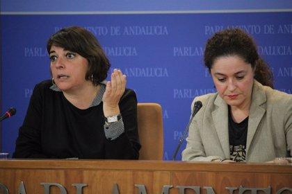 IULV-CA volverá a presentar una proposición de ley para reformar la Cámara de Cuentas