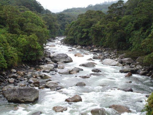 Río en los Andes amazónicos