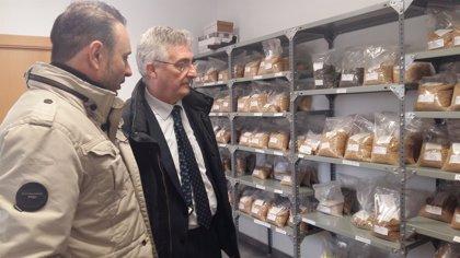 La empresa altoaragonesa Cereales Arasanz amplía y moderniza sus instalaciones