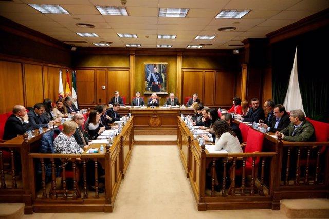 La Diputación celebra un pleno extraordinario sobre Galasa y Tíjola.
