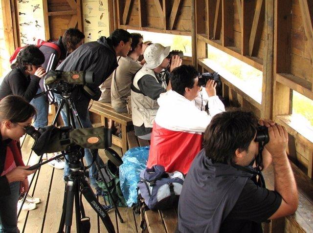 Turistas observando aves en el Delta del Ebro