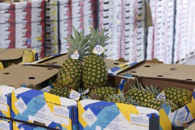 Tráfico de fruta en el Puerto de Tarragona
