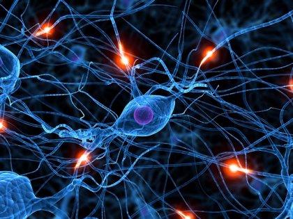 Expertos abogan por mejorar la atención a pacientes con afecciones neurológicas, principal causa de discapacidad