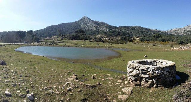 Humedal Alazores