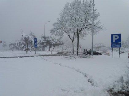 La nieve obliga a cerrar a todo tipo de vehículos el puerto de Opakua y a camiones el de Orduña