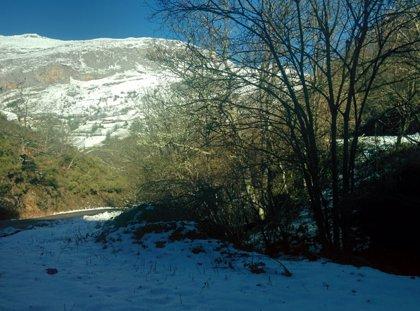Asturias está este sábado en riesgo por nevadas