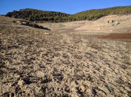 Ciudadanos quiere que la Comunidad adelante las ayudas de la PAC en situaciones climáticas desfavorables como sequía