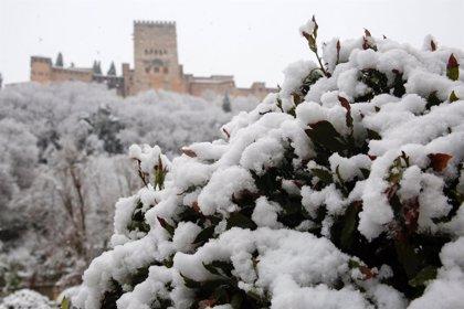 Aviso naranja por nevadas en Granada y Jaén, y amarillo en Málaga, Almería y Córdoba
