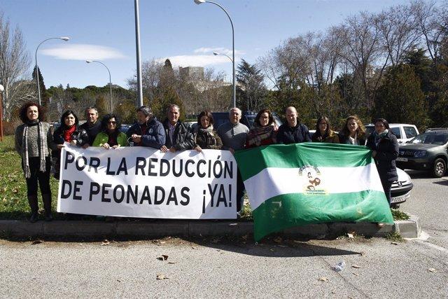 Protesta a las puertas de Moncloa por la reducción de la peonadas