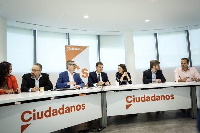Ejecutiva nacional de Ciudadanos