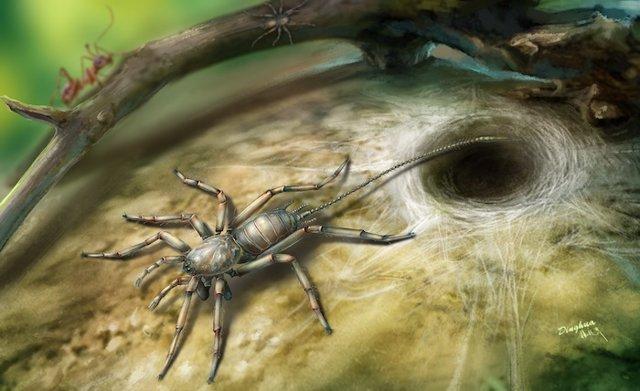 Recreación de la araña en su entorno