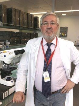 Investigador Antonio López-Beltrán