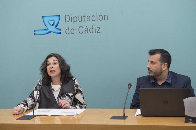 Presentación Plan de Movilidad Sostenible de Diputación