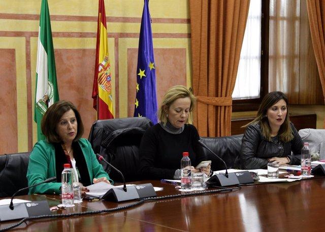 Sánchez Rubio comparece en comisión parlamentaria