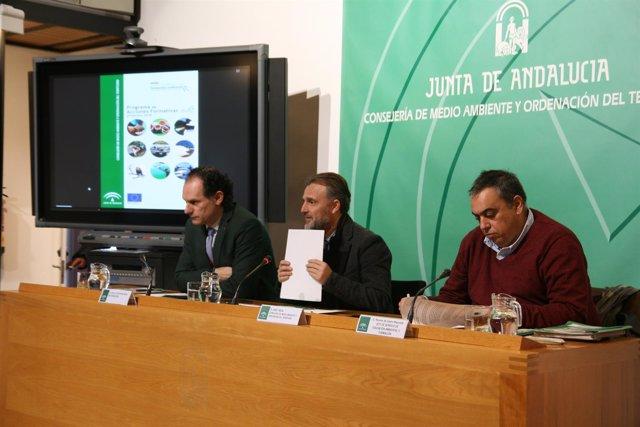 José Fiscal, en el centro, durante la presentación del plan