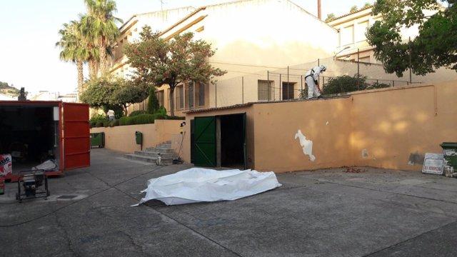 Retirada de amianto en el CEIP Luis de Góngora de Almodóvar del Río