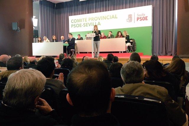Psoe De Andalucía: Audio Y Foto Verónica Pérez Sobre El Peaje Ap4 10 02 18