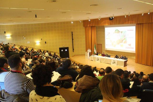 Encuentro de asambleas locales de IU Andalucía